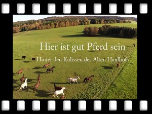 Film Haidhof